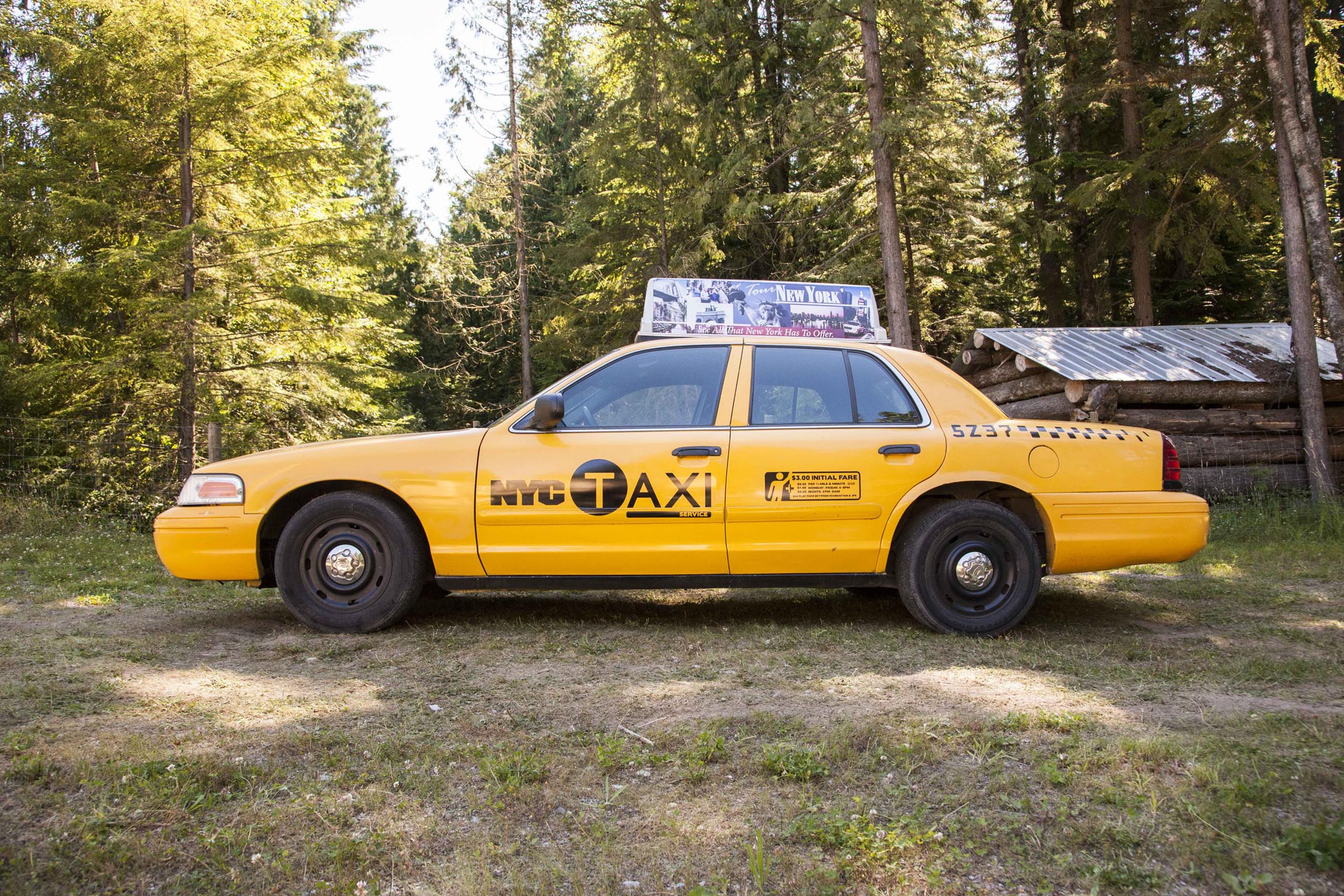 NYC Taxi amp Limousine Commission Driver Education 5001310 ... - photo#31